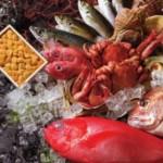 【身近な食べ物が?】双極性障害を改善・良くする食べ物6つ【キウイフルーツ・イワシも】
